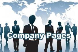 De ultieme statusupdate voor Company Pages op Linkedin #infographic
