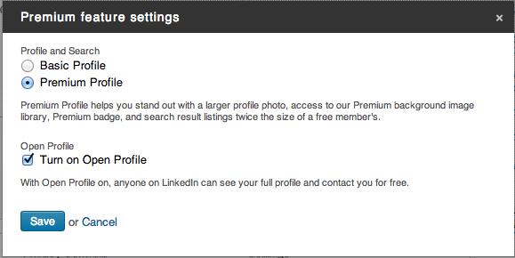 Linkedinpro.nl - open profiel op LinkedIn 2